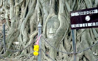 mahathat_head.jpg
