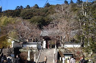 shuzen_f.jpg